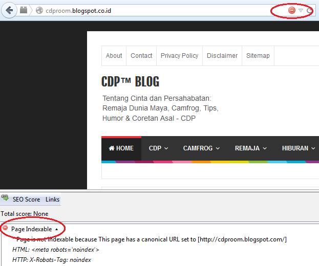 Blog Page Not Indexable