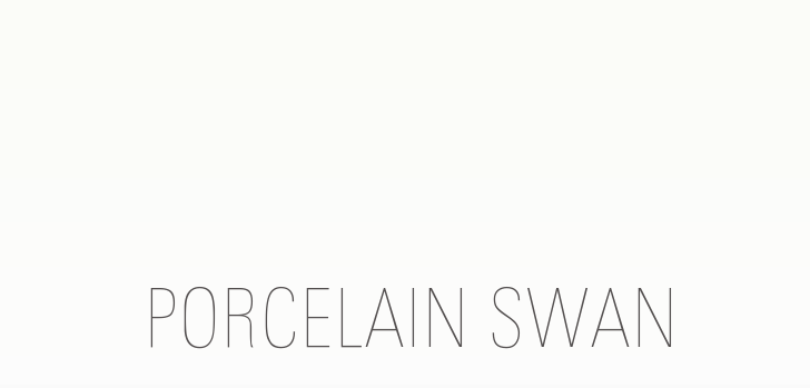Porcelain Swan ♡ A Lifestyle Blog