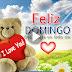 FELIZ DOMINGO - Nunca estás solo, DIOS está contigo aunque no lo veas. Él te cuida, te ama y te protege.