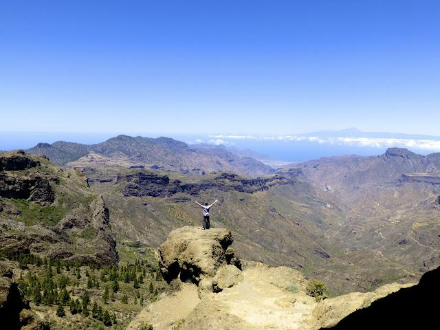 Vista dede Roque Nublo