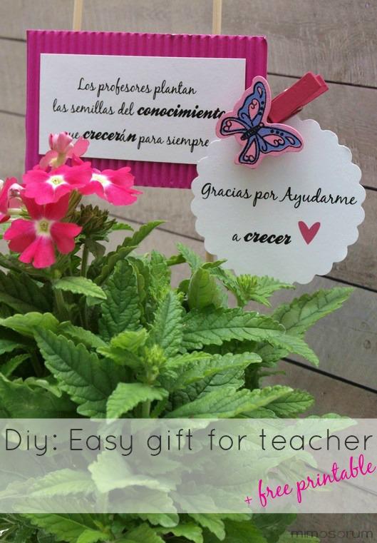 Un regalo especial para profesores {imprimible gratis}. Easy gift for teacher + free printable.