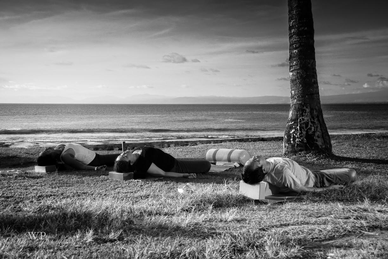 yin yoga paul grilley pdf