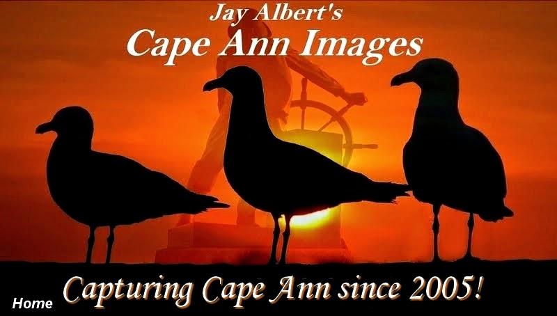 Cape Ann Images