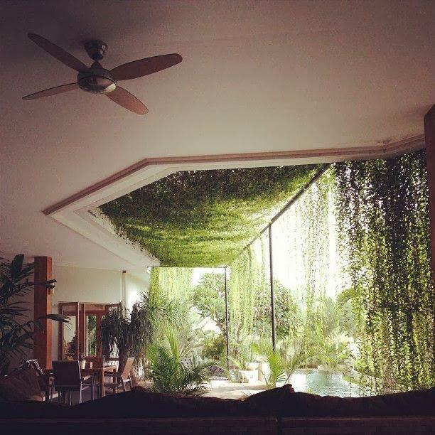 Najpiękniejsze Zielone Aranżacje We Wnętrzach W Moim