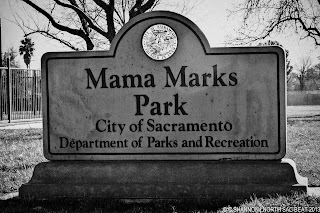 Volunteer to clean up Mama Marks Park