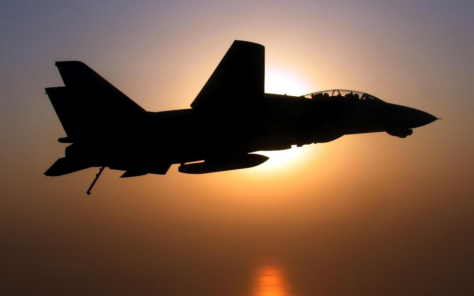 Guns & Weapons: F-14 Tomcat