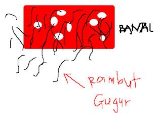http://4.bp.blogspot.com/-pgP2Y0shrwM/T6m3MxlsfgI/AAAAAAAAB5Q/HhumkRmT9fk/s1600/rambut%20gugur.bmp