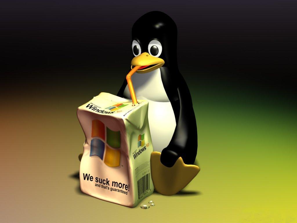 http://4.bp.blogspot.com/-pgnigA_P3sU/Tcq7wv3xSbI/AAAAAAAAMLQ/o4nVXSEJlp0/s1600/Penguin-Windows-XP-Tetrapac-1-05IY6DTAQ8-1024x768.jpg
