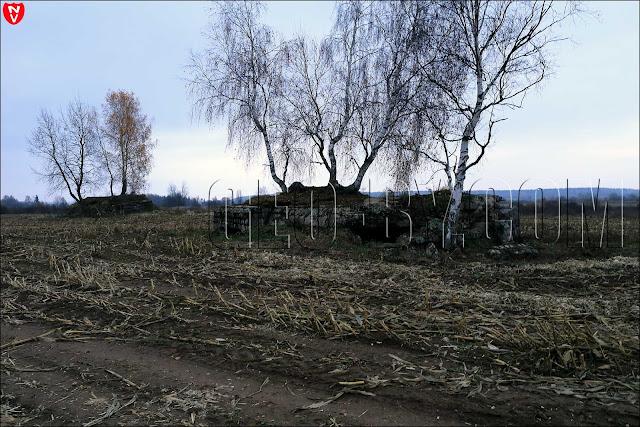 Снимок нескольких бункеров
