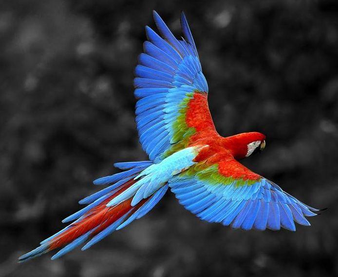 Piękna kolorystyka