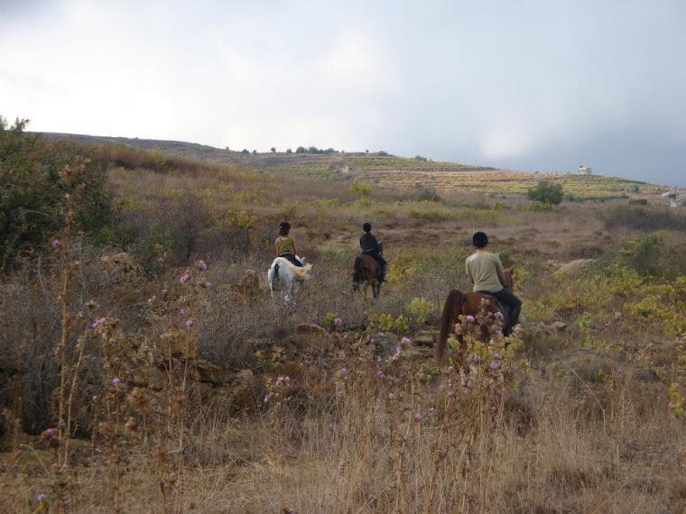 Aley-Rijmeh trail