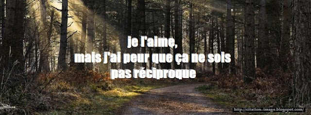 Citation facebook d'amour en image