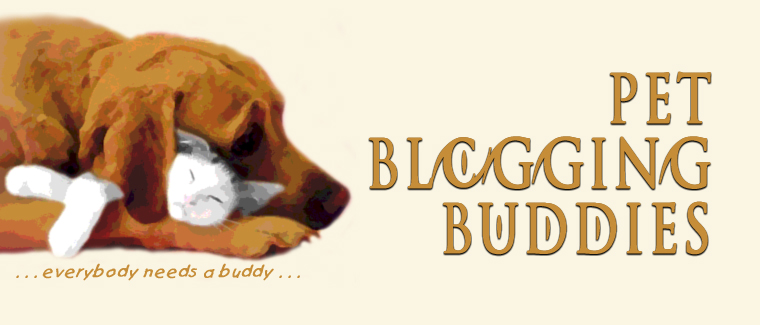 Pet Blogging Buddies