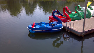 paddle boats designed like dragons