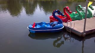 paddle boats designed like dragons