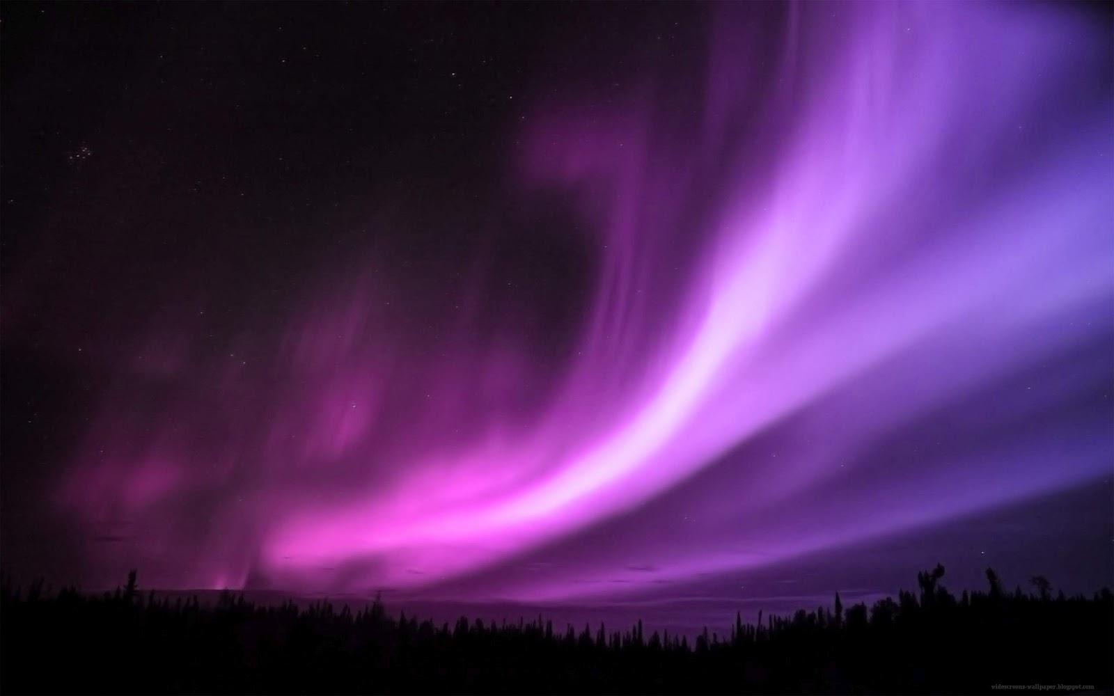 Purple Aurora - Purple LightLight Purple Wallpaper Design