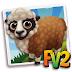 Arapawa Sheep (baby ,adult,prized)