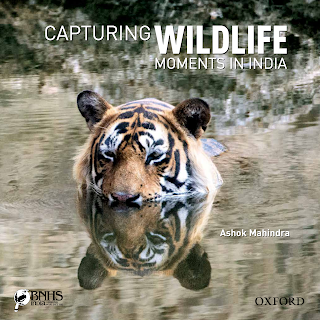 Capturing Wildlife Moments in India - Book Review