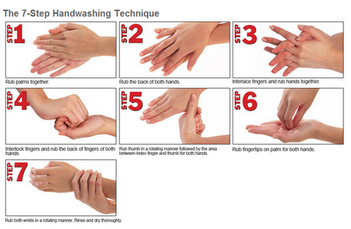 Handwashing Technique