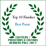 TOP TEN FINISHER BEST POEM