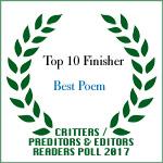 TOP TEN FINISHER BEST POEM