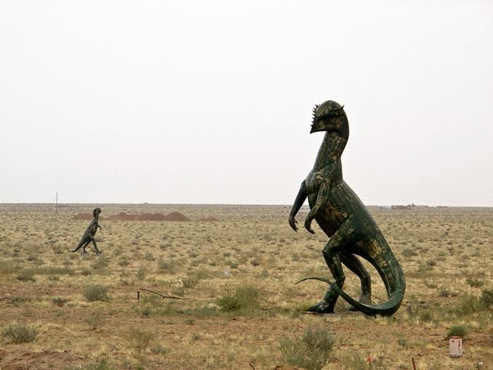 North of China on the Sino-Mongolian border, near the town of Erenhot (also known as Erlian), you will find the statues of two towering Brontosauruses. The two dinosaurs are located on either side of the main highway, their long necks stretching to the other, until the two dinosaur's mouth meet as if to share a kiss. Each dinosaur statue is 34 meters wide and 19 meters high. The span of the two together reaches 80 meters. The ground near the kissing couple is littered with many dozen smaller statues of dinosaurs of all shapes and sizes.