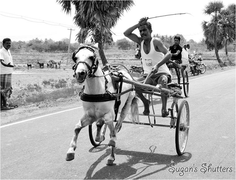 emphoka, photo of the day, Sugan Raj, Nikon Coolpix P510