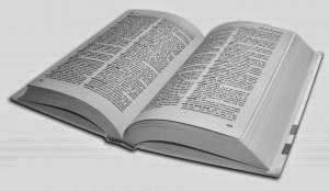 DICIONÁRIO ATUALIZADO  DE TARAUACAÊS PARA OS DE FORA - CLIQUE PARA O MUNDO SE ABRIR