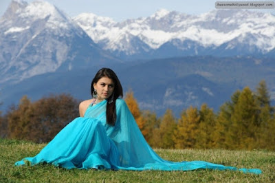 Hansika Motwani Hot and Beautiful photos in saree