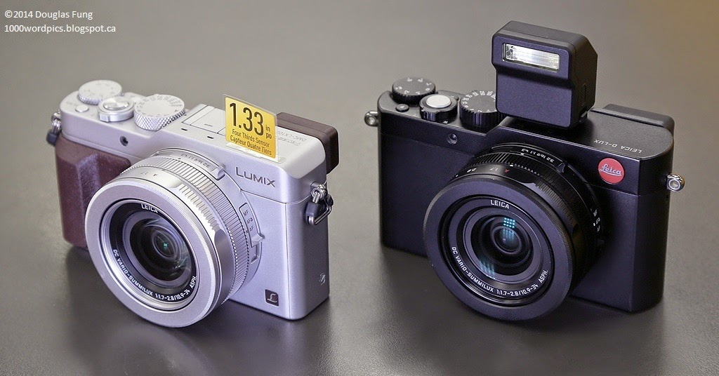 Panasonic Lumix DMC-LX100 and Leica D-Lux Type 109 Review