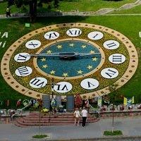 Новый дизайн цветочных часов
