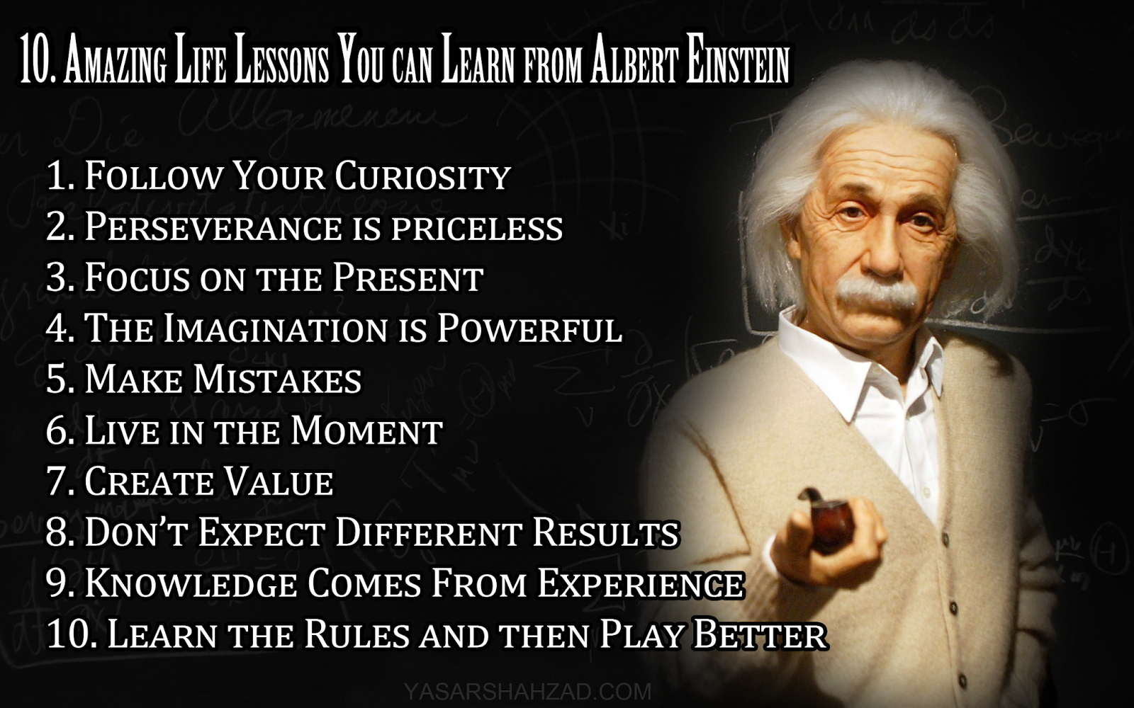 Popular Sayings About Life Fascinating Albert Einstein Wisdom Quote  The Best Collection Of Quotes