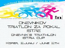 PREDSTAVITEV / PRESENTATION 2011
