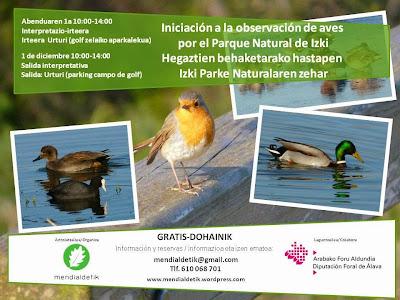 http://mendialdetik.files.wordpress.com/2013/11/observacic3b3n-aves.pdf
