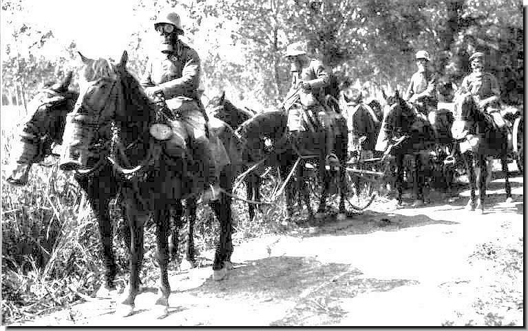 First World War Gas Mask. First World War: 1916: Verdun