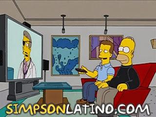 Los Simpson 14x17