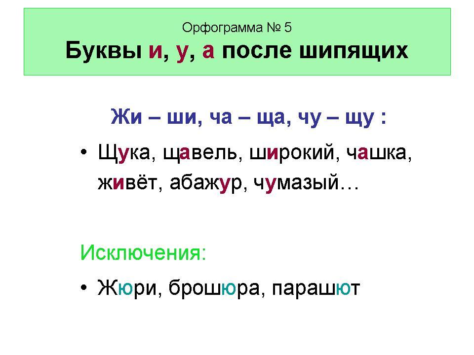Русский Язык 5 Класс Быстрова Словарный Диктант Много Шишек