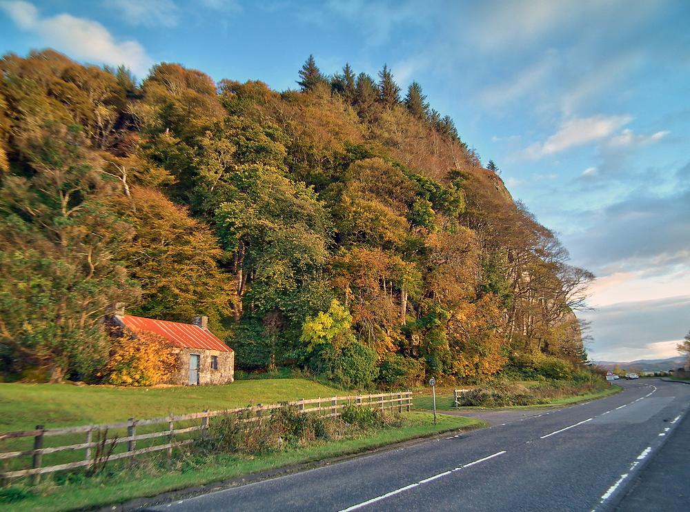 tn_Autumn+colour+Craigneuk+1-HDR.jpg