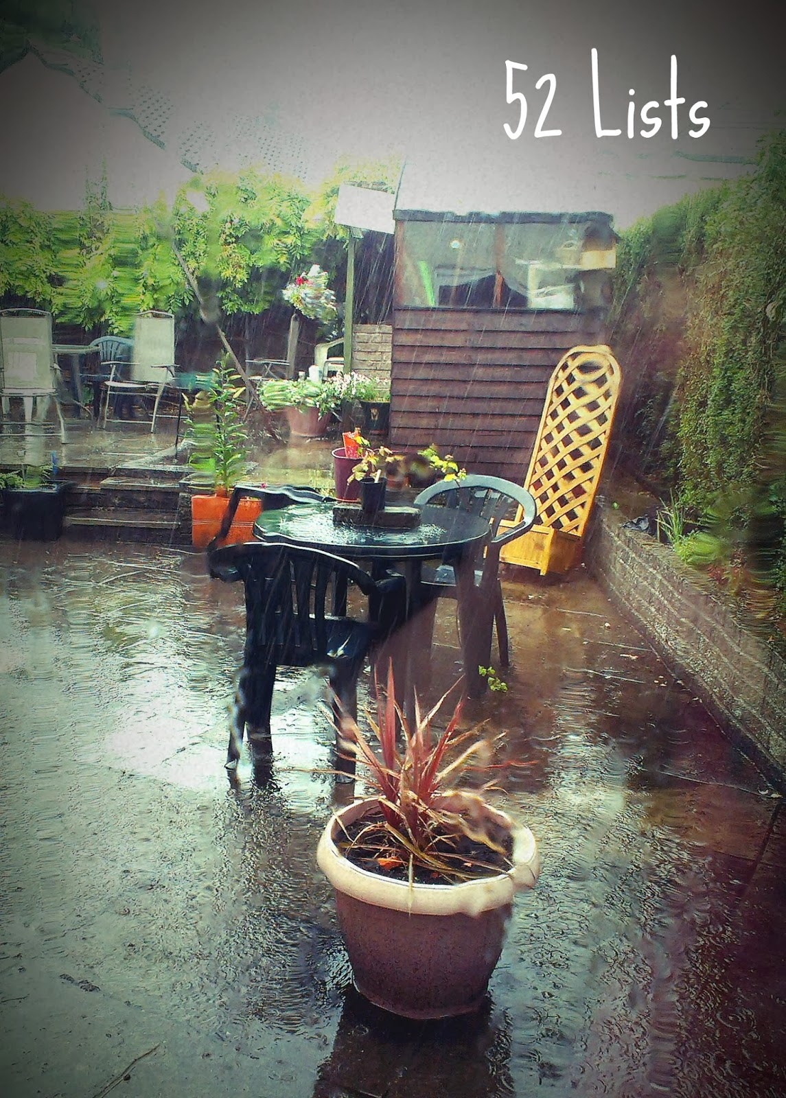 Garden on a rainy day