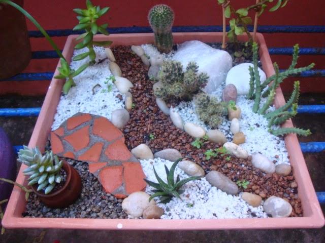 mini jardins em vaso:Este é mais um que acabei de fazer, numa especie de bandeja, aquela