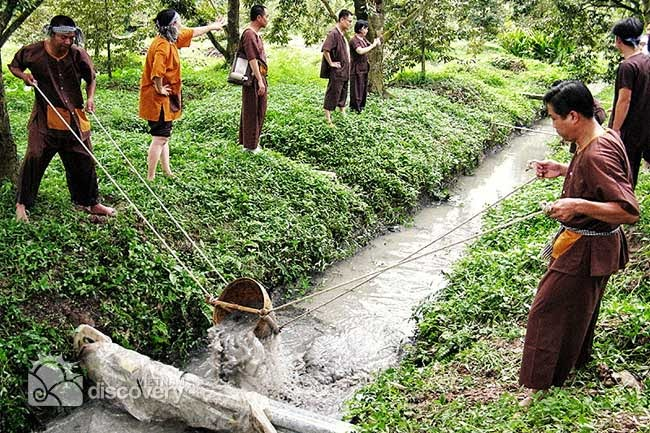 http://tuoitrenews.vn/lifestyle/26079/draining-ditches-for-fish-a-highlight-in-mekong-delta-tours