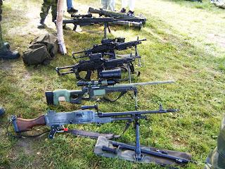 isveç ordusu