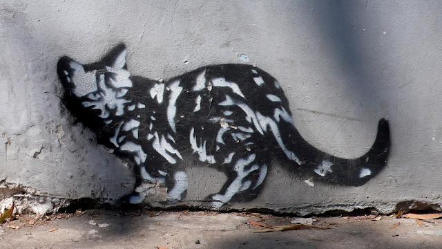 street art in santiago de chile stencil arte callejero cat