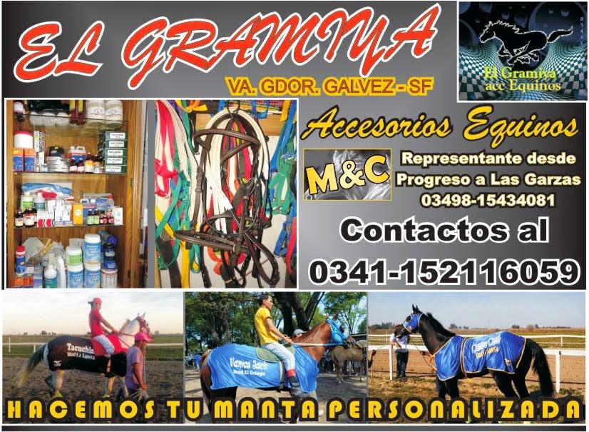 EL GRAMIYA - 01/11/14