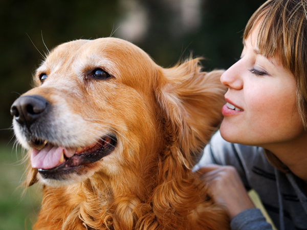 why dogs are better than women