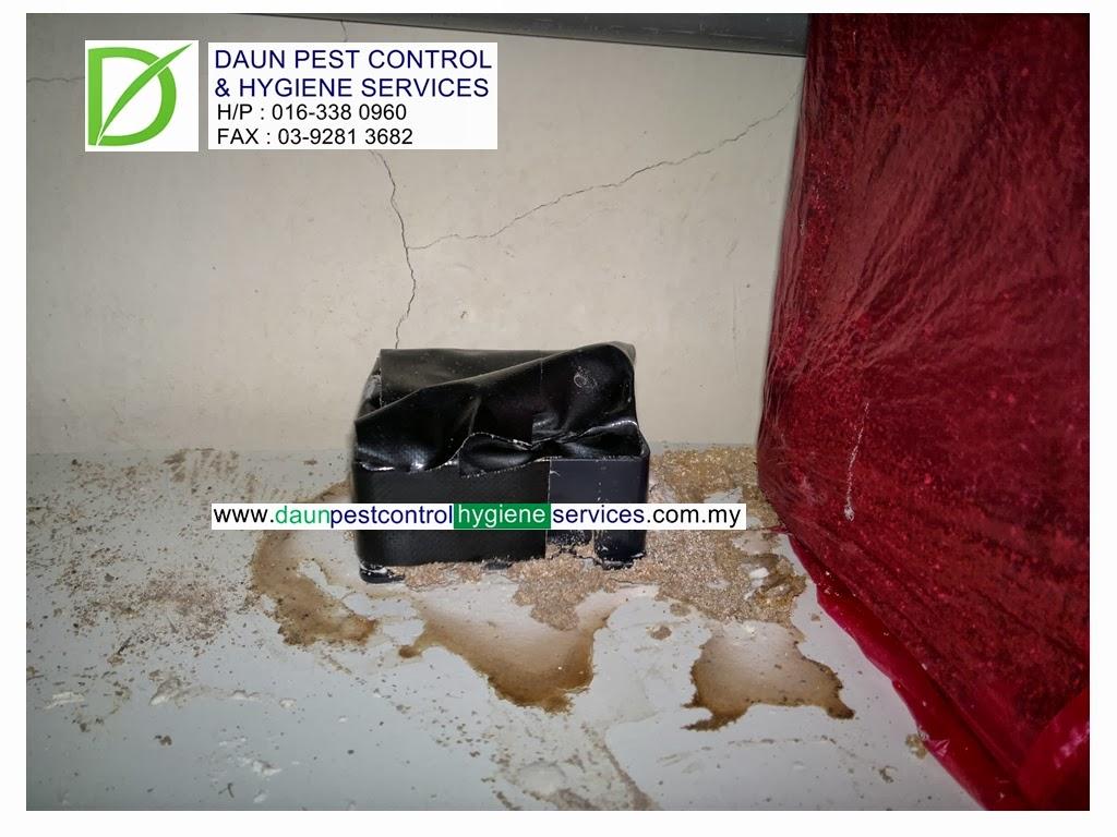 Daun Pest Control And Hygiene Services Sistem Umpanan