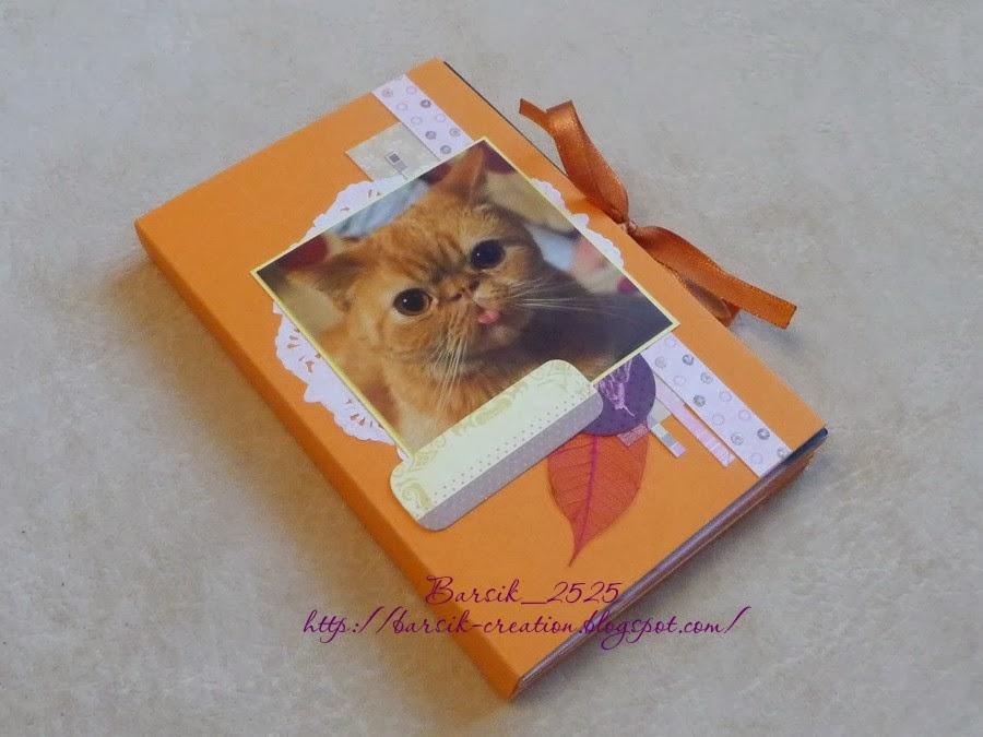 мини-альбом про кота, миник, рыжий экзот