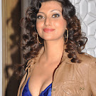 Hamsa Nandini @ Dgmrg 2011 Photo Gallery