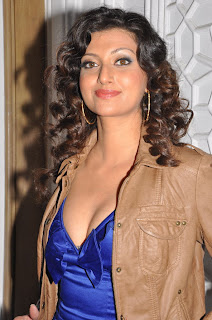 Hamsa Nandani Sizzling DGMRS South 2011 Pictureshoot Spicy Pictures covered in Coat