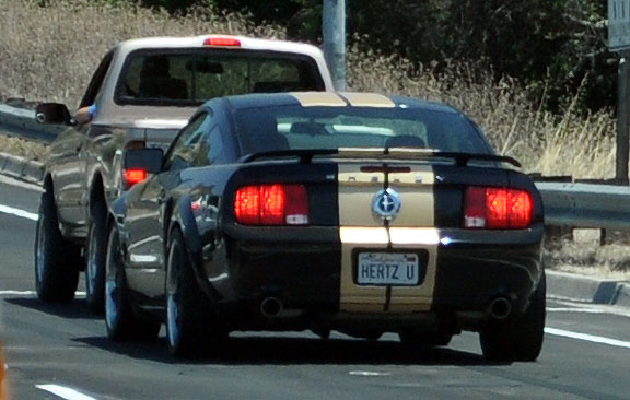 Nice, The Classic Colors On A Modern Shelby Stang... Cool